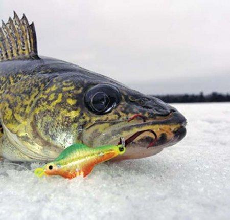 Условия зимней рыбалки