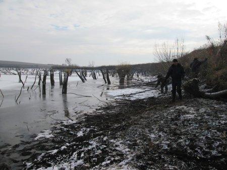 Новости пруда Степановка