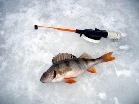 Зимняя рыбалка в Степановке 2016