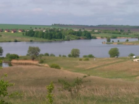Весеннее зарыбление пруда Степановка - 2019 год
